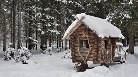 Small wooden house between trees. Winter pine forest covered with fresh snow. Small wooden house between trees stock video