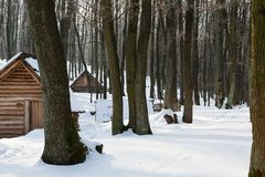 Wooden houses in snow covered forest. Small wooden houses in the reconstruction of an old historic hill-fort Stock Photo