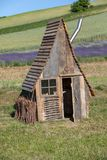 Small wooden hut in Garden full of lavender stock images