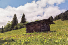 A small wooden hut. Surrounded by a green meadow Stock Photography