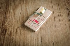 Mouse or rat trap with cheese stock images