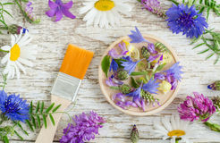 Small wooden plate with various flowers, petals and leaves and cosmetic brush, Ingredients of herbal cosmetic. Stock Photo