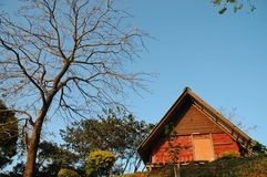 Small wooden red boutique cottage on the hill in Northern Thaila Royalty Free Stock Images