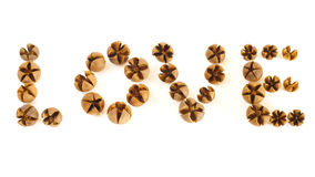 Small Wooden Shells spell Love Stock Photography