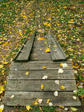 Small wooden stairs. Wooden stairs in the forest Stock Image