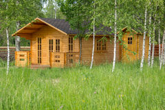 Small wooden summerhouse among young birches Stock Photos