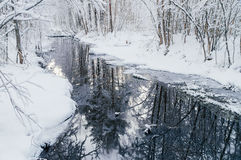 Small woodland river in snowy dreamlike forest Stock Images