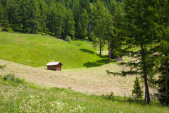 Small wooend hut in the Dolomites Royalty Free Stock Photography