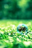Small world on green glass Royalty Free Stock Photos
