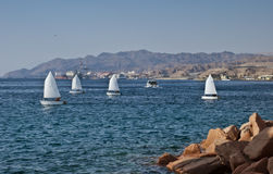 Small yachts at the gulf of Eilat, Israel Royalty Free Stock Photo