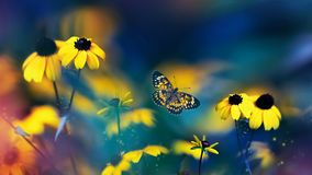 Free Small Yellow Bright Summer Flowers And Beautiful Butterfly  On A Background Of Blue, Pink And Green Foliage In A Fairy Garden. Stock Photos - 167452353