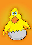 Small yellow chicken. With orange background vector illustration