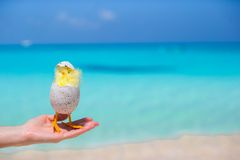 Small yellow chicken on the white beach Royalty Free Stock Image