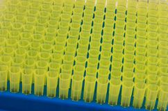 Small yellow flasks stock image