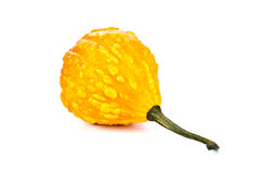 Small yellow pumpkin Stock Photo
