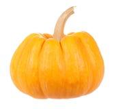Small yellow pumpkin Stock Photo