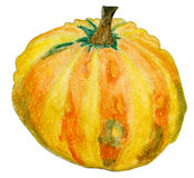Small yellow pumpkin watercolor Royalty Free Stock Photos