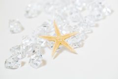 Starfish and White Gems Royalty Free Stock Image