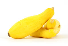 Small Yellow Summer Squash Royalty Free Stock Photography