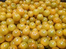 Small yellow tomatoes in bulk uniform background. stock photos