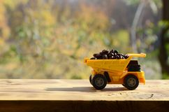 A small yellow toy truck is loaded with brown coffee beans. A car on a wooden surface against a background of autumn forest. Extr