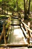 Smalle houten brug in het park stock afbeelding