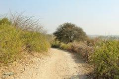 Smalle open plekken in de ruwe bergen van Punjab stock foto