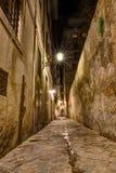 Smalle steeg in Toscanië royalty-vrije stock fotografie