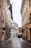 Smalle straat in de oude stad in Tallinn Estland in een regenachtige dag stock fotografie
