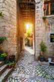 Smalle straat in historische stad Trogir, Kroati? De Bestemming van de reis Smalle oude straat in Trogir-stad, Kroati? De stegen  royalty-vrije stock fotografie