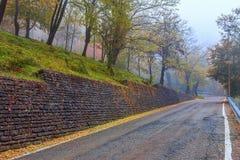 Smalle weg bij mistige ochtend Royalty-vrije Stock Foto