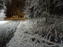 Smalle weg onder de lamp in de herfst Stock Foto