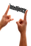 Smaller intelligence Stock Photography