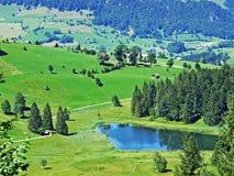The smaller lake Schwendisee Hinter Schwendisee, Wildhaus. Canton of St. Gallen, Switzerland stock photo
