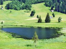 The smaller lake Schwendisee Hinterer Schwendisee, Wildhaus. Canton of St. Gallen, Switzerland royalty free stock images