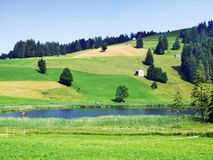 The smaller lake Schwendisee Hinterer Schwendisee, Wildhaus. Canton of St. Gallen, Switzerland royalty free stock photos