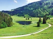 The smaller lake Schwendisee Hinterer Schwendisee, Wildhaus. Canton of St. Gallen, Switzerland stock photo