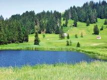 The smaller lake Schwendisee Hinterer Schwendisee, Wildhaus. Canton of St. Gallen, Switzerland royalty free stock photography