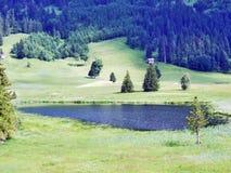 The smaller lake Schwendisee Hinterer Schwendisee, Wildhaus. Canton of St. Gallen, Switzerland stock image