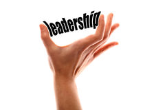 Smaller leadership concept Royalty Free Stock Photography