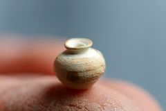 The smallest clay pot Stock Image