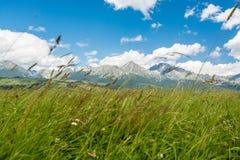 High Tatras in Slovakia royalty free stock images