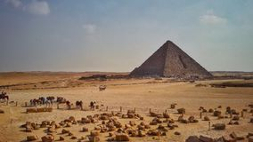 The Great Pyramid of Giza Stock Images