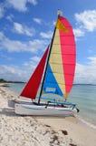 SmallSailing Catamaran Royalty Free Stock Image