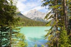 Smaragd sjön Yoho National parkerar Kanada Arkivbilder