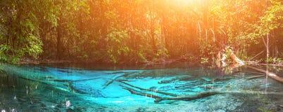 Smaragdblåttpöl krabi thailand Arkivfoton