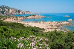 Smaragden seglar utmed kusten Royaltyfri Bild