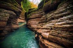Smaragdflod i en härlig kanjon Royaltyfria Bilder
