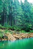 Smaragdgroene meerkust Stock Fotografie
