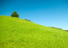 Smaragdhügel Lizenzfreies Stockfoto